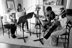 Amarantos String Quartet