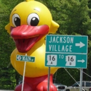 Wildquack Duck Race & Music Festival